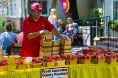 Vendendo pêssegos frescos do Condado de Lancaster Imagem de Stock Royalty Free
