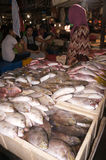 Vendendo peixes Fotografia de Stock