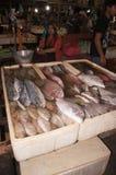 Vendendo peixes Fotos de Stock Royalty Free