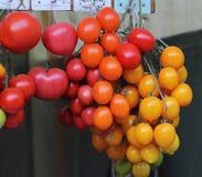 Vendendo tomates Foto de Stock