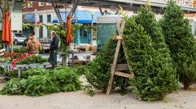 Vendeur d'arbre de Noël au marché historique d'agriculteurs de Roanoke image libre de droits