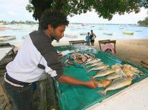 Vendeur de poissons Photo libre de droits