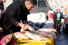 Vendeur de poissons en Irak Images stock