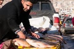 Vendeur de poissons en Irak Photographie stock