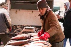 Vendeur de poissons en Irak Images libres de droits