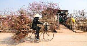 Vendeur sur la rue dans la vieille ville de Hanoï Photo stock