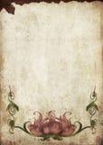 Vendimia Imagen de archivo