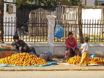 Vendita dei mandarini Immagine Stock