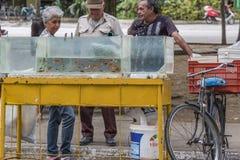 Vendita dei pesci dell'acquario Fotografie Stock Libere da Diritti