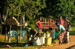 Vendita dell'alimento nella strada nazionale del Mozambico Fotografia Stock Libera da Diritti