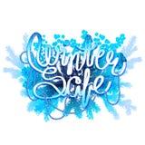 Vendita di inverno Progettazione congelata Immagini Stock Libere da Diritti