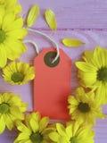 Vendita di legno rosa decorativa vibrante gialla del fondo di vendita di etichetta del crisantemo Immagine Stock