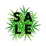 Vendita - testo con le foglie verdi Immagini Stock Libere da Diritti