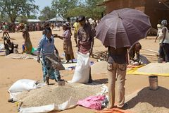 Venditore africano del mercato Fotografie Stock Libere da Diritti