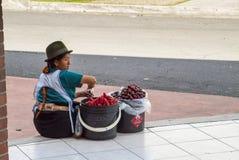 Venditore ambulante Fotografie Stock Libere da Diritti