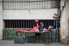 Venditore ambulante che vende i ricordi Fotografia Stock Libera da Diritti