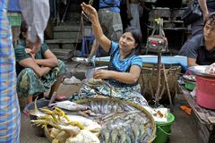 Venditore ambulante Myanmar Fotografia Stock Libera da Diritti
