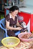 Venditore ambulante nel Vietnam immagine stock