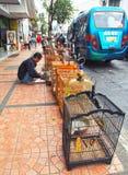 Venditore ambulante nella città di Bandung Fotografia Stock Libera da Diritti
