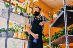 Venditore barbuto brutale del fiore con i tatuaggi sulle sue armi in un flowe Immagine Stock Libera da Diritti