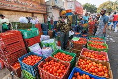 Venditore dei pomodori e di altre verdure che aspettano i clienti al mercato dell'agricoltore Immagini Stock