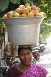 Venditore del mango Immagine Stock