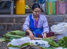 Venditore della foglia del betel nel Myanmar Immagini Stock