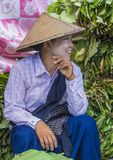 Venditore della foglia del betel nel Myanmar Fotografia Stock