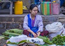 Venditore della foglia del betel nel Myanmar Fotografie Stock Libere da Diritti