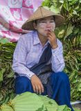 Venditore della foglia del betel nel Myanmar Immagini Stock Libere da Diritti