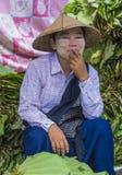 Venditore della foglia del betel nel Myanmar Fotografia Stock Libera da Diritti