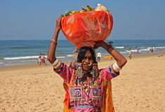Venditore della frutta, India Immagine Stock