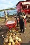 Venditore della noce di cocco mombasa Fotografia Stock Libera da Diritti