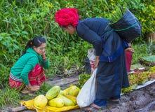 Venditore delle verdure nel Myanmar Fotografia Stock