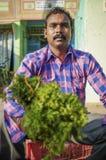 Venditore indiano Fotografia Stock Libera da Diritti