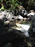 Vendo a água que cai da parte superior fotos de stock