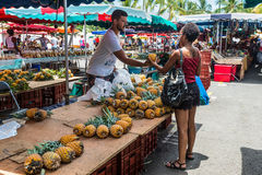 Vendor fresh fruit pineapple Royalty Free Stock Image