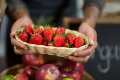 Vendor holding a basket of strawberries at the grocery store. Close-up of a vendor holding a basket of strawberries at the grocery store Royalty Free Stock Photography