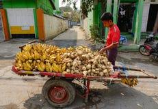 Vendor selling fruits on street in Bagan, Myanmar Stock Photography