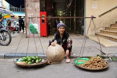 Fruit vendor in Hanoi. A vendor selling fruits and vegetables from baskets on a traditional carrying pole on the street in Hanoi, Vietnam Royalty Free Stock Images