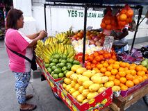 A vendor sells a variety of fresh fruits in a fruit cart along a street in Antipolo City, Philippines royalty free stock photography