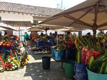 Vendors and People at the Flower Market, Cuenca Ecuador. Close up of the street vendors selling flowers and plants to people walking the street in historic Royalty Free Stock Photo