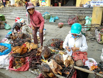 Vendors sell living poultry on vietnamese market. Vendors at unknown market in Vietnam, Jan 26, 2013 Royalty Free Stock Photo