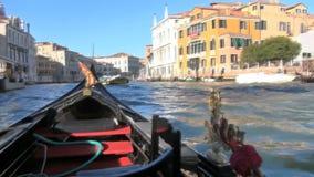 Venecia almacen de video