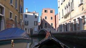 Venedig stock video