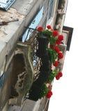 Venedig balkong med blommor arkivbild
