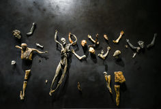 Venedig-Biennial 2017, italienischer Pavillon Lizenzfreie Stockfotografie