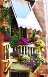 Venedig-Blumen Stockbild