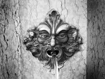 Venedig: Brunnen Lizenzfreies Stockbild