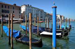 Venedig, Gondeln über Grand Canal Stockfotografie